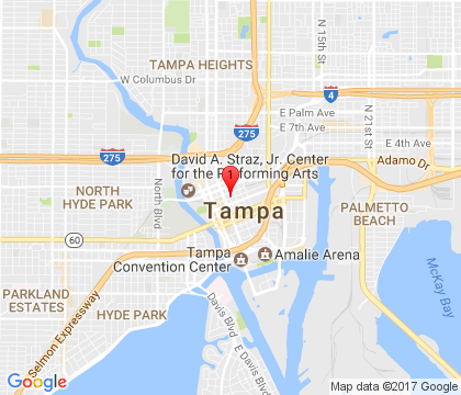 Tampa Speedy Locksmith Tampa, FL 813-261-6590